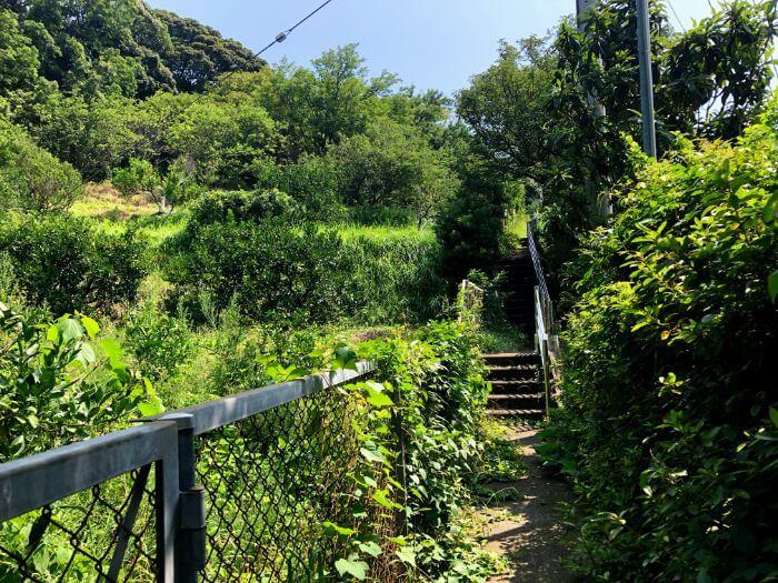 小山臨海公園の秘密の入口