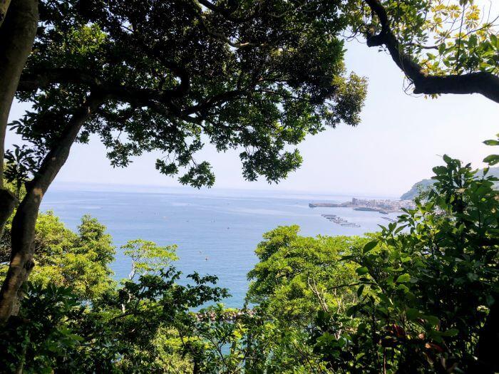 網代の小山臨海公園展望台から見える海の景色