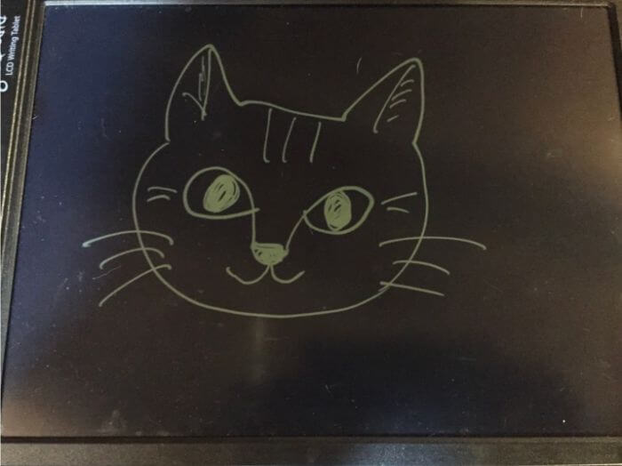 ブギーボードに書いた猫の絵